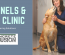 flooring for kennels and vet clinics